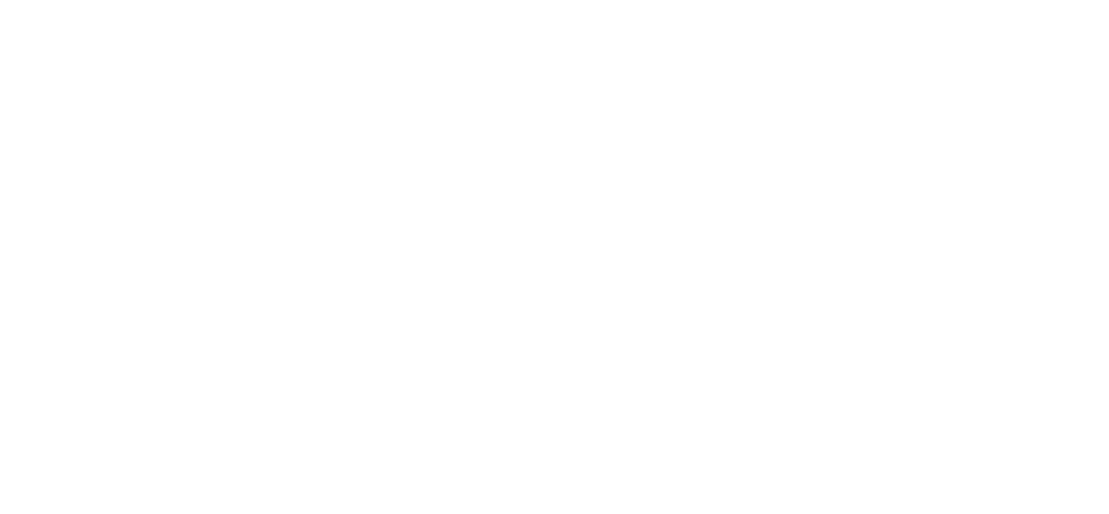 Flyerman Koningsdag Promo